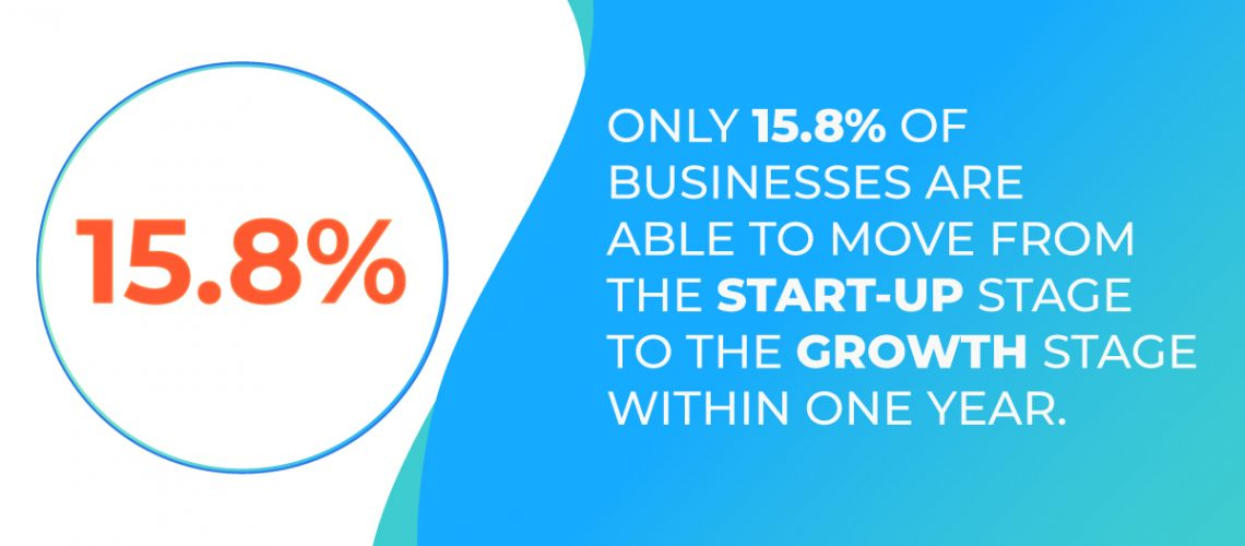 growth and expansion stage business lifecycle
